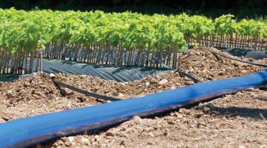 Layflat – Plastic reinforced hoses